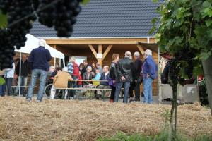 Rondleiding door de wijngaard met wijnproeverij
