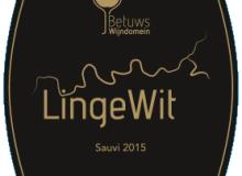 LingeWit Sauvi