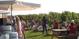 Open Wijngaard Dagen