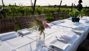 Dineren in de wijngaard Betuws Wijndomein