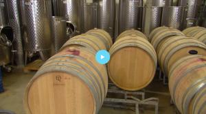 BinnensteBuiten op Betuws Wijndomein -Wijn en alc. vrij bubbels