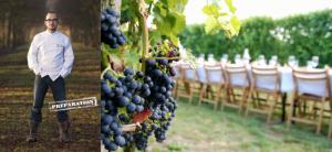 Wilco de Baar Betuws Wijndomien 2:3 juni 2017 Wijngaard diner