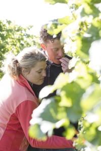 Het Betuws Wijndomein van Diederik Beker en Arina van Leenen. opdr 10397