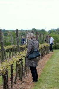 Klompenpad wandeling door wijngaard Betuwe Gelderland