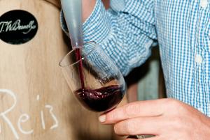workshop wijnmaken Betuws Wijndomein